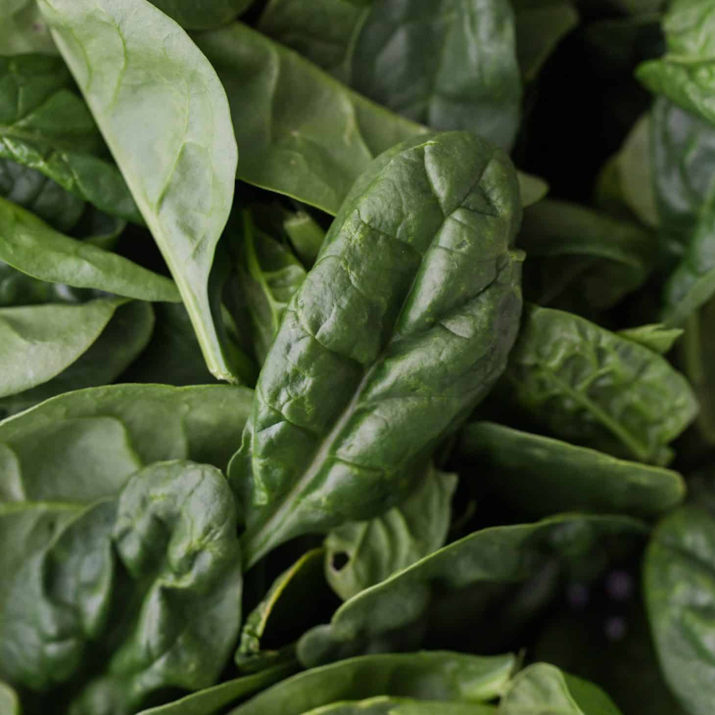 Spinach - Explore an Ingredient - Naturally Ella