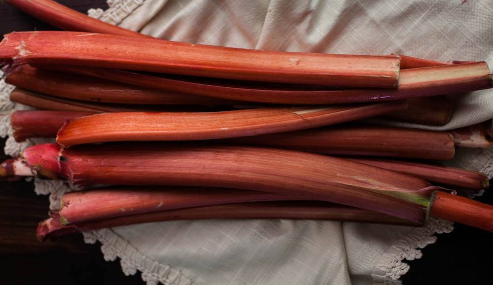 rhubarb (1 of 1)