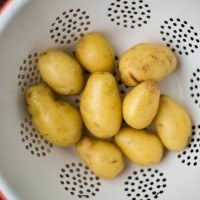 Potatoes | http://naturallyella.com