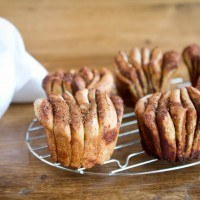Cinnamon Pull-Apart Fantails