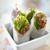 Sesame-Ginger and Quinoa Spring Rolls