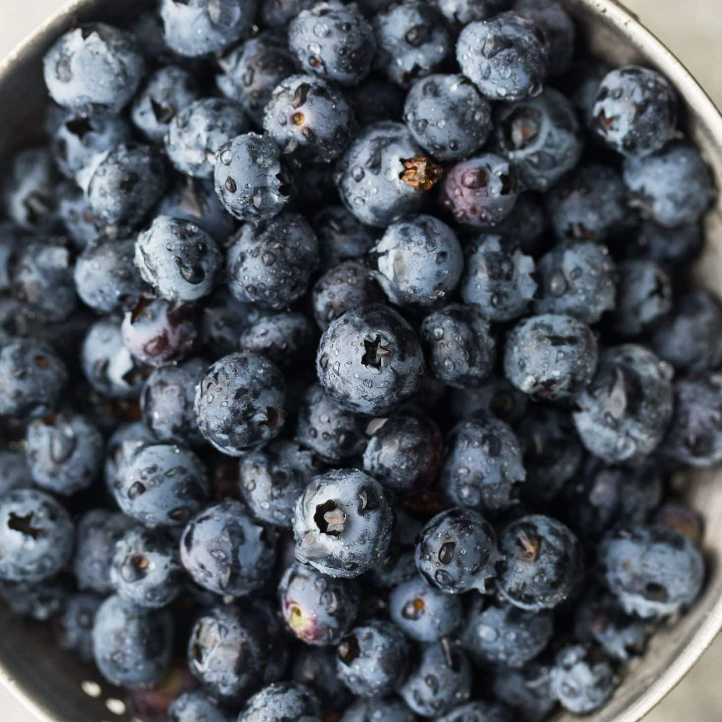 Blueberries | Explore an Ingredient