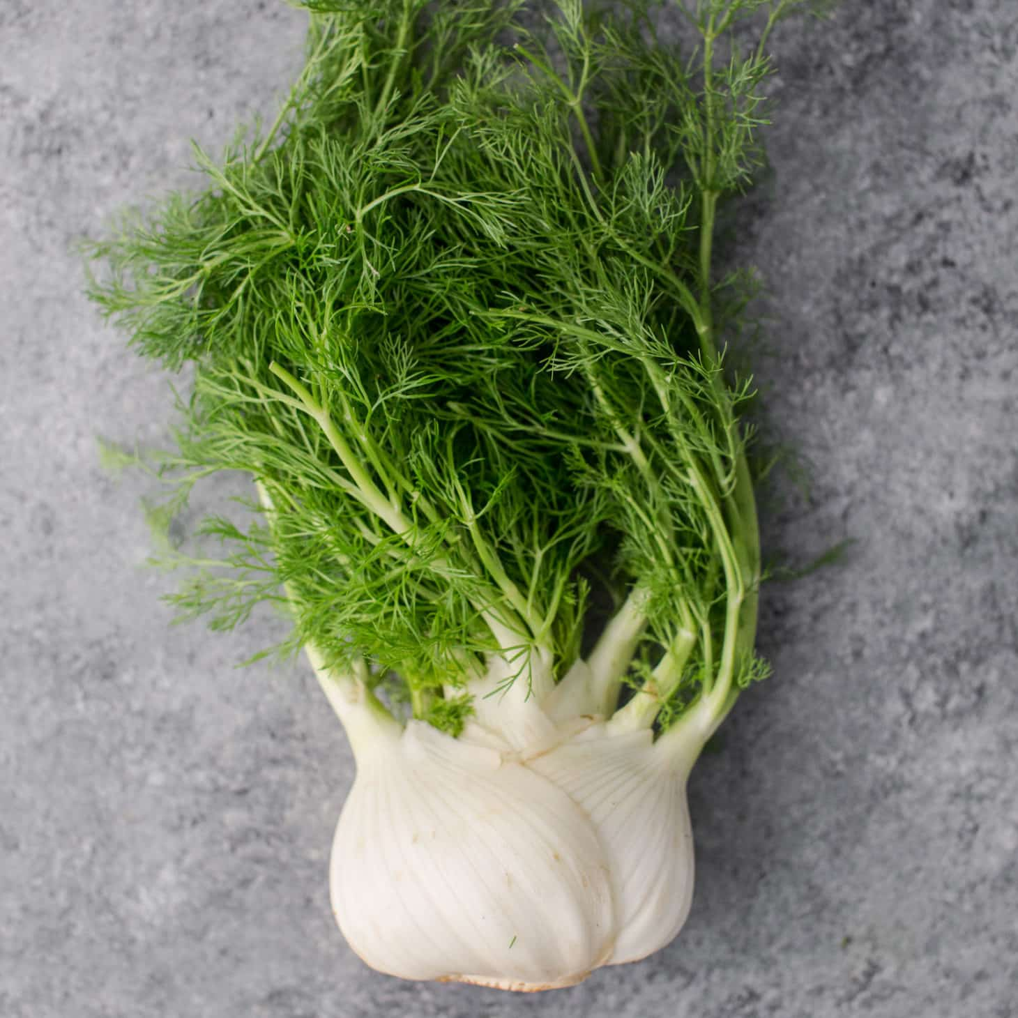 Fennel Recipes Storage And Cooking Tips Naturally Ella