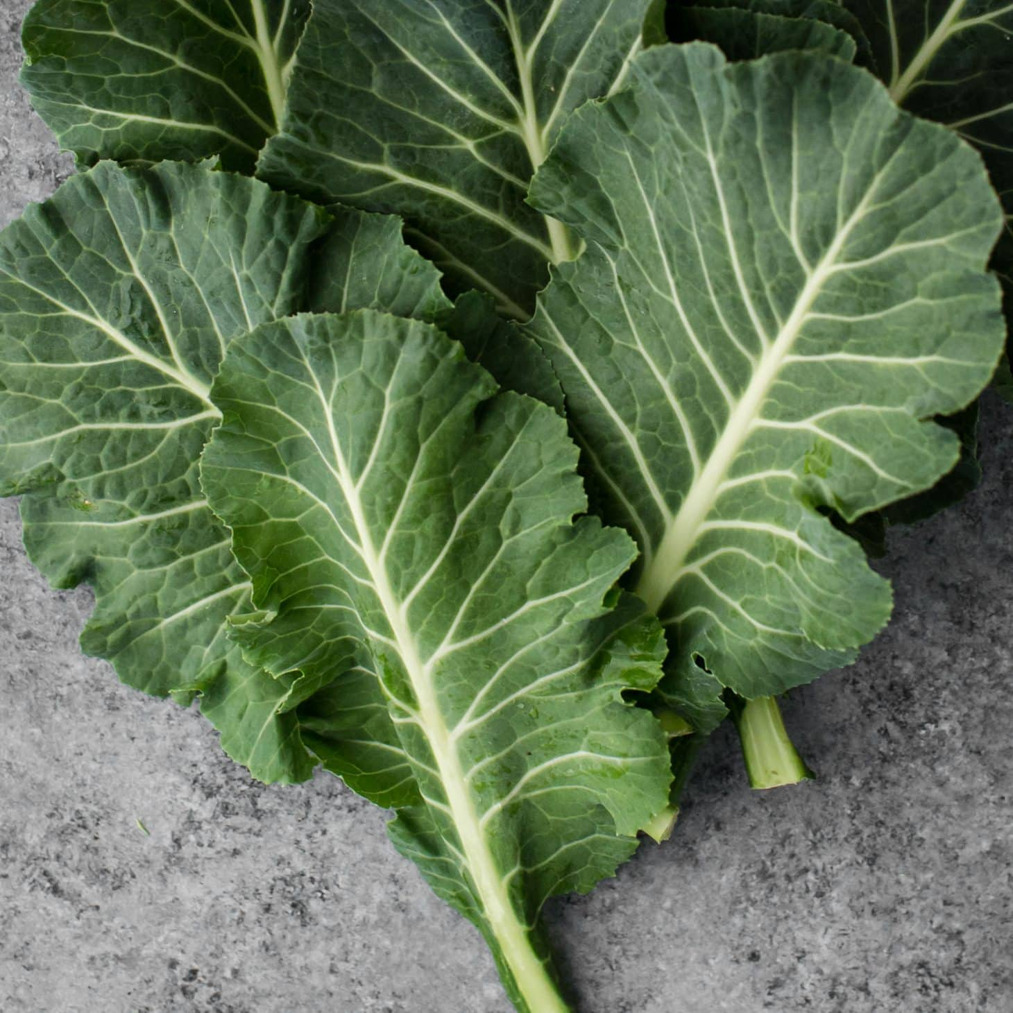 Collards- Explore an Ingredient