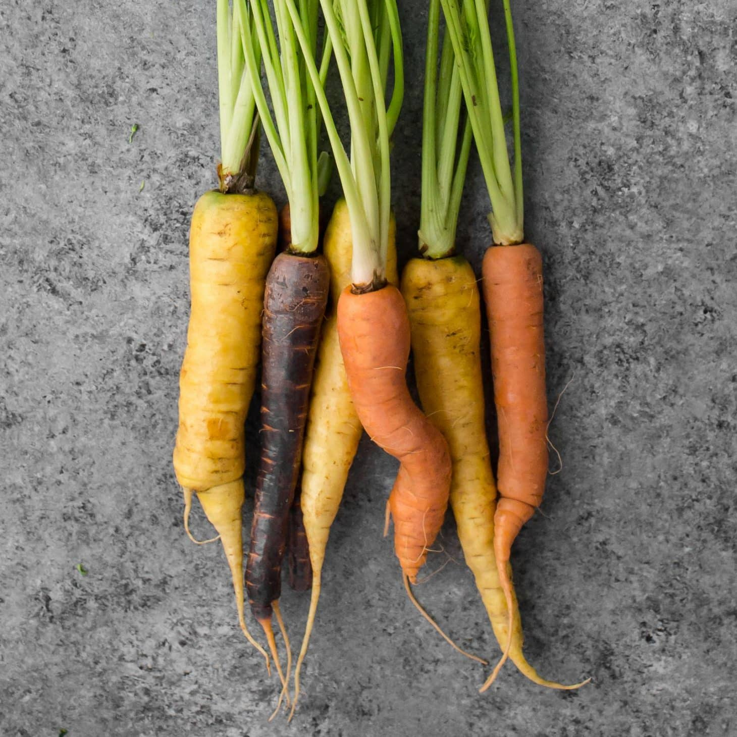Carrots- Explore an Ingredient