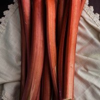 Rhubarb Recipes (that are not pies!)