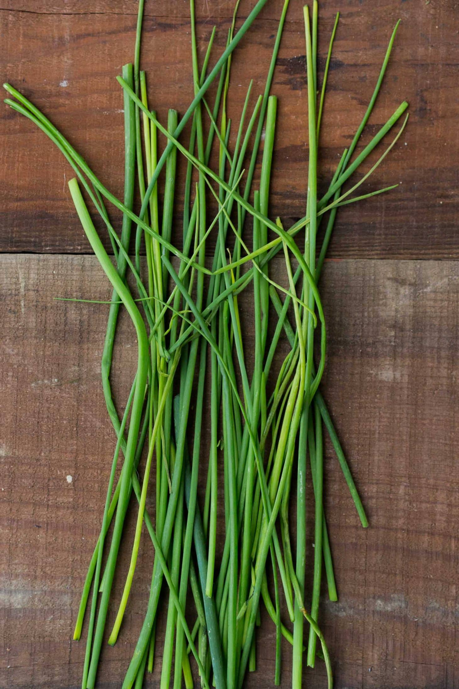 Chives - Herbs - Stock a Pantry
