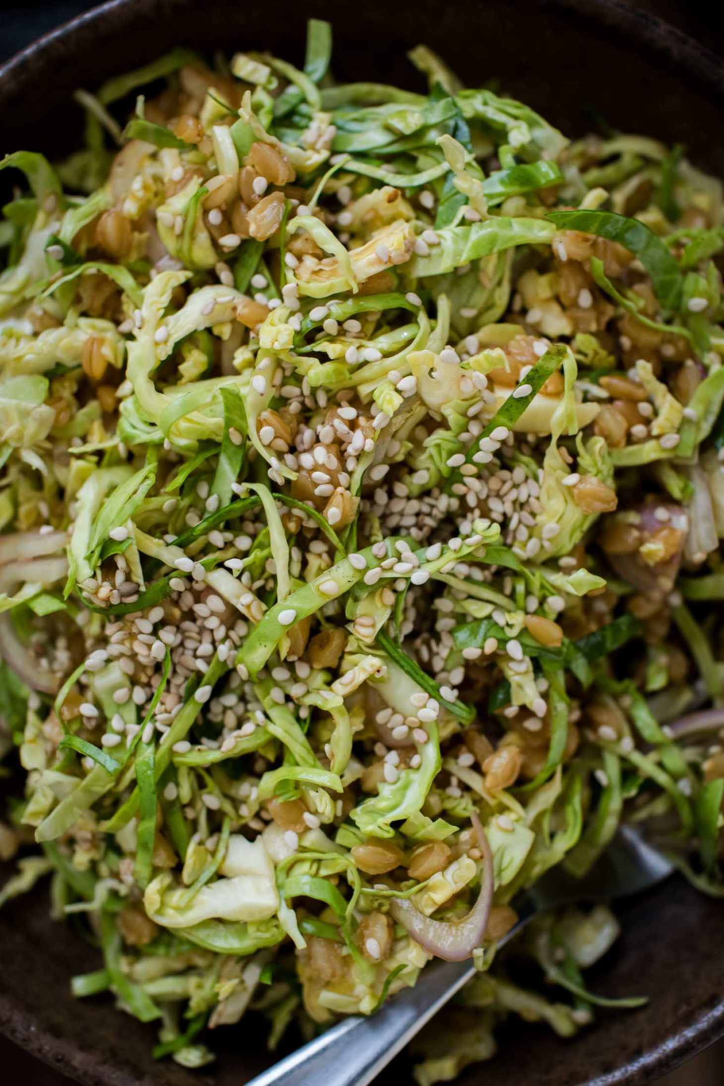 Shaved Brussels Sprout Salad with Einkorn and Soy-Mustard Dressing | Naturally Ella