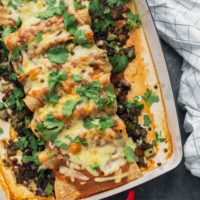 Black Lentil Enchiladas with Zucchini