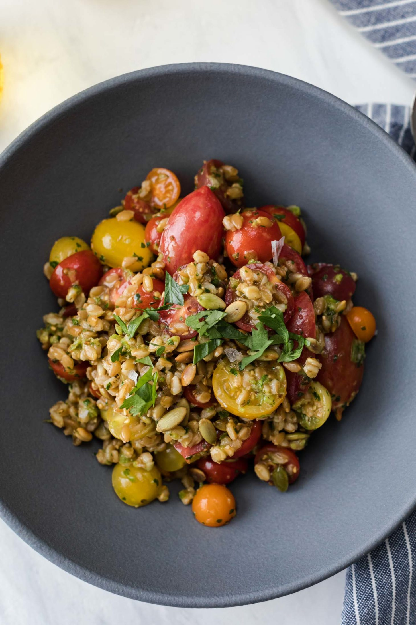 Overhead, close-up shot of a harissa tomato salad made with cooked farro, fresh grape tomatoes, and green harissa.