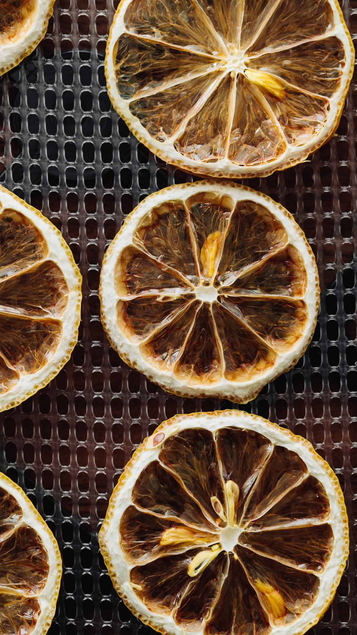 Close-up overhead shot of a lemon slice that has been dried.