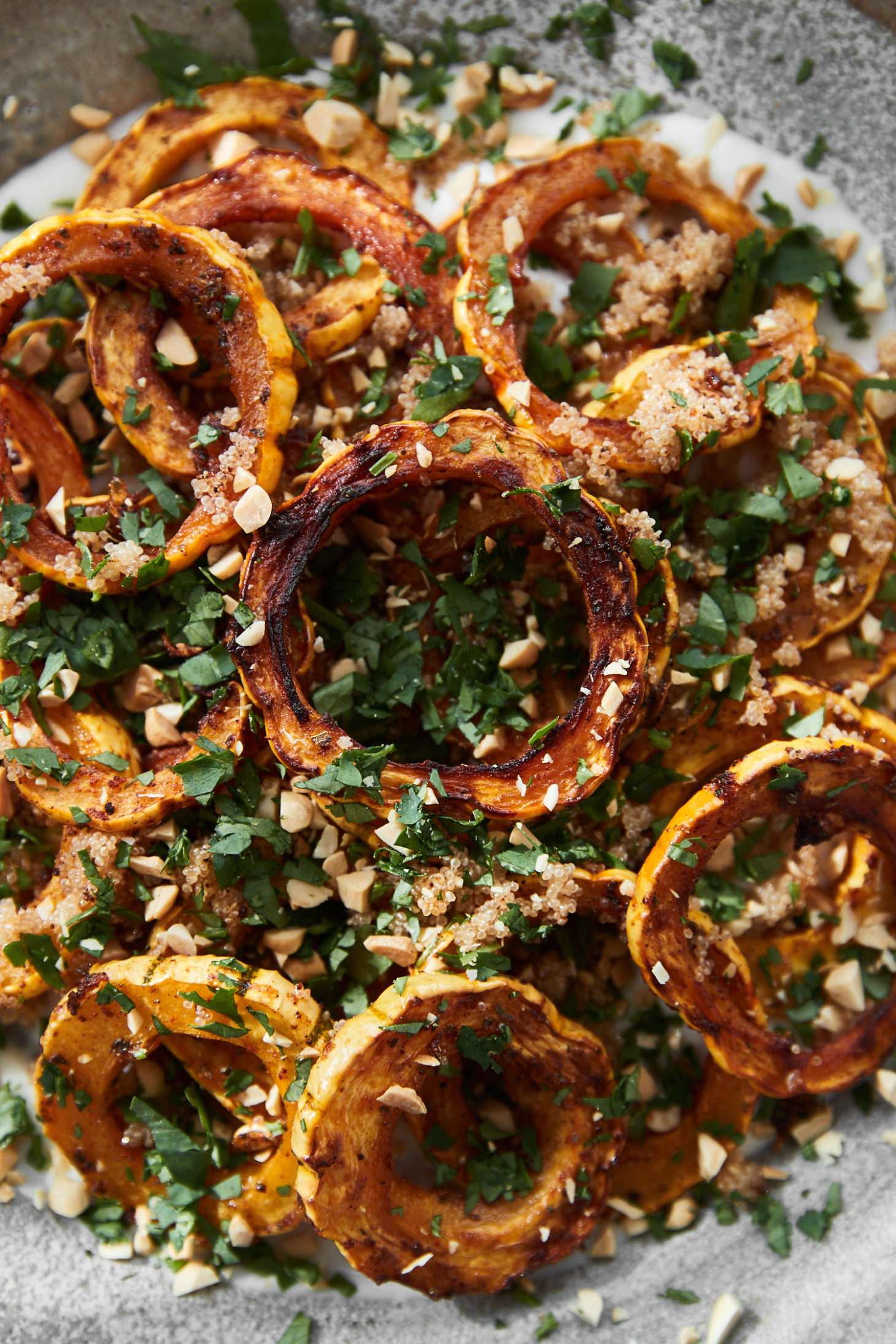 Close-up photograph of roasted delicata squash on top of yogurt sauce and topped with leaves of cilantro.